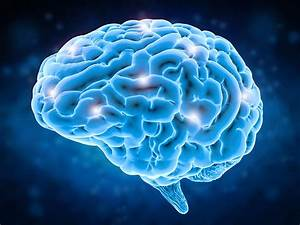 Does The Brain Awaken Via A Continuous Phase Transition