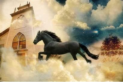 Horse Friesian Fantasy Wallpapers Desktop Wallpapersafari