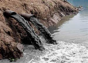 Essay On Water Pollution For Children And Students
