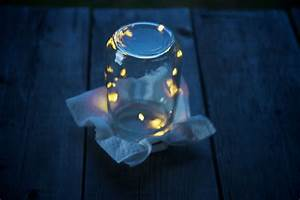Mason Jar Fireflies 2 | By the numbers: 6 - Fireflies in ...