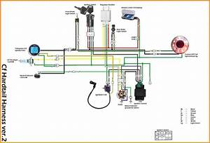 Tao Tao 50cc Engine Diagram  U2022 Downloaddescargar Com