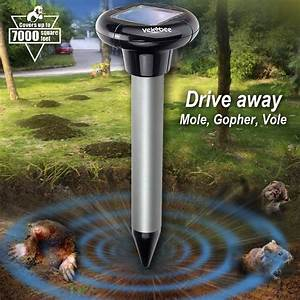 Top 10 Best Sonic Mole Repellents In 2019 Reviews