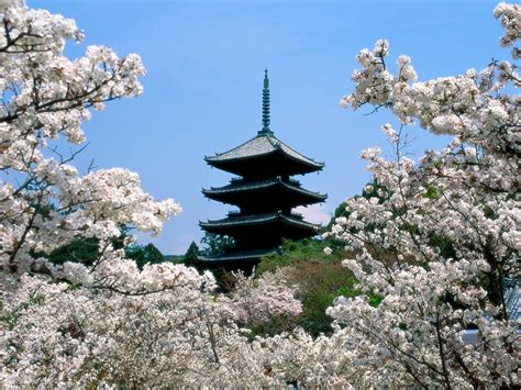 Beautiful Country Japan Wallpapers Cute Girls Celebrity