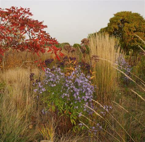 Garten Herbst Aufräumen by Piet Oudolf Verr 228 T Gartentricks F 252 R Herbst Und Winter Welt