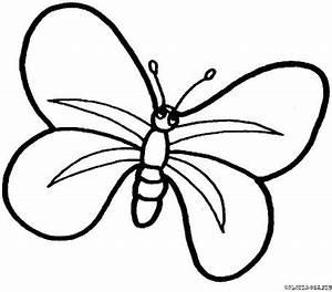 Dessin Facile Papillon : dessin de papillon facile ~ Melissatoandfro.com Idées de Décoration