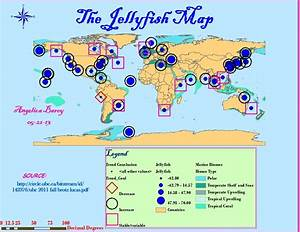 Where Do Jellyfish Live Map