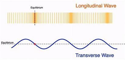 Longitudinal Transverse Waves Wave Animation Physics