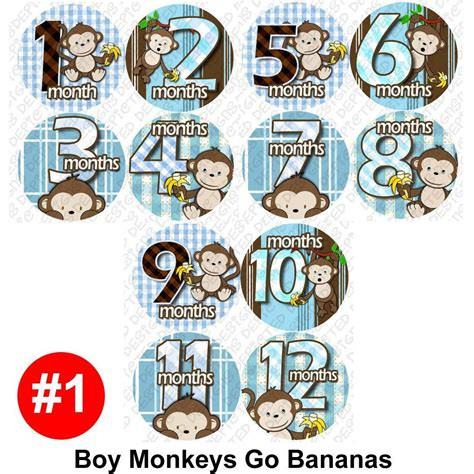 Baby Month Stickers Monthly Onesie Stickers Boy Monkey