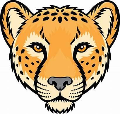 Cheetah Face Clipart Leopard Vector Illustration Head
