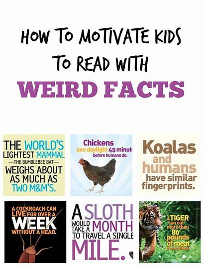Weird Facts True Fact Classroom Knowledge Dazeknights