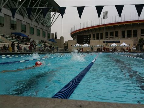 4 Best Public Swimming Pools In Los Angeles  Nerve Rush