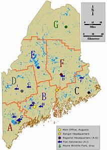 Maps  Wildlife Management Areas  Lands  Wildlife  Fish