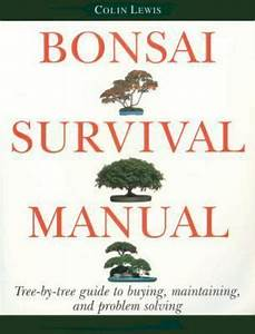 Bonsai Survival Manual   Tree
