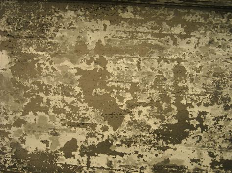 Free photo: Grunge texture Abstract Grunge Surface