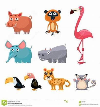 Clip Animals Cartoon African Fun Animali Afrikaanse