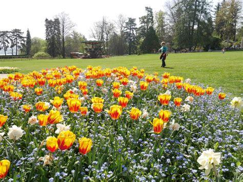 Botanischer Garten Berlin Spielplatz by Genf Botanischer Garten Karussell Spielplatz