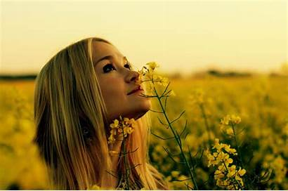 Looking Blonde Flowers Yellow Outdoors Rapeseed Px
