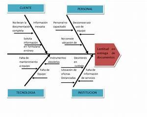 Ejemplo De Un Diagrama De Causa Y Efecto