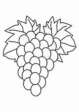 Grapes Coloring Pages Fruit Wine Printable Drawing Ape Purple Colouring Getcolorings Print Getdrawings Colorluna sketch template