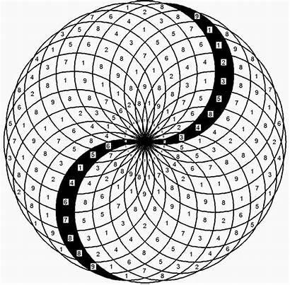 Fibonacci Geometry Sacred Phi Yang Yin Spiral
