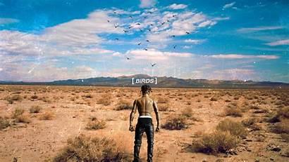 Birds Travis Scott Album Wallpapers Backgrounds Highest