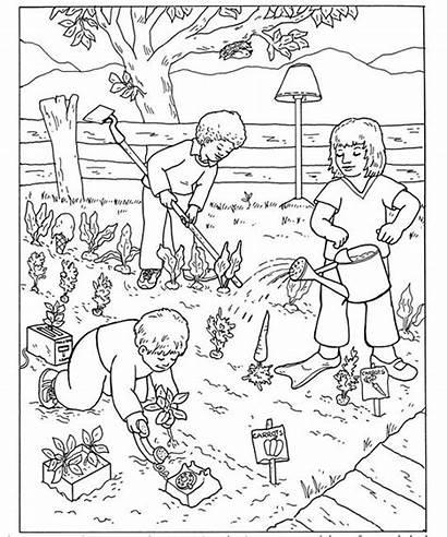 Garden Coloring Vegetable Pages Vegetables Preschool Farm