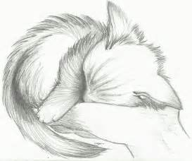 Sleeping Kitten Sketch Drawings