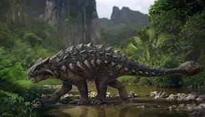 Ankylosaurus Facts Habitat Diet Fossils Pictures