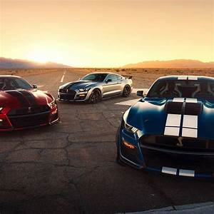 The 2020 Shelby GT500's Painted Racing Stripes Are Crazy Expensive • Gear Patrol