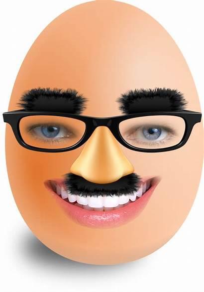 Egg Face Funi Comment