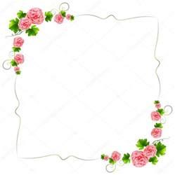 carnation flowers uma borda flores cor de rosa cravos vetor de stock