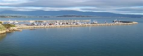 Bay Fisher Boats Nz by Wildcat Fishing Sightseeing Charters Golden Bay New