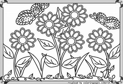 Coloring Garden Flower Pages Printable Colouring Drawing