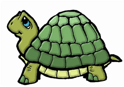 what color is a turtle guys you to get sad animal avatar page 3