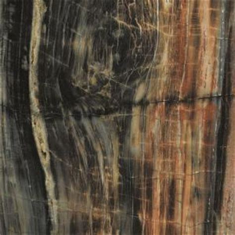 wood laminate sheets home depot formica 48 in x 96 in 180fx laminate sheet in petrified wood etchings 034741246408000 the