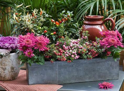3 Jardinières D'automne Fleuries