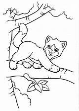 Coloring Pages Cat Frank Lisa Tree Sheets Animal Colouring Printable Horse Cats Books Adult Unicorn Christmas Kittens Unique Kitty Valentine sketch template
