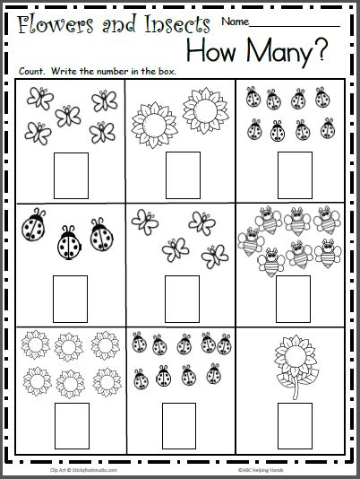 spring insects  math worksheet  counting