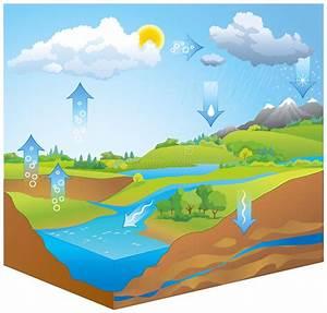 Water Cycle  Vector Diagram Stock Vector