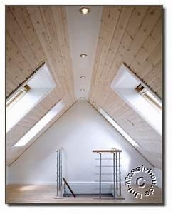 Dachausbau Ideen Für Ausbau Umbau Und Aufstockung : ber ideen zu dachboden ausbauen auf pinterest ~ Lizthompson.info Haus und Dekorationen