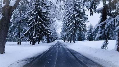 Winter Snow Road Trees 4k Landscape Wallpapers