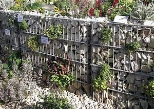 Gabionen Gartengestaltung Bilder : bepflanzte gabionen mit stauden ~ Whattoseeinmadrid.com Haus und Dekorationen