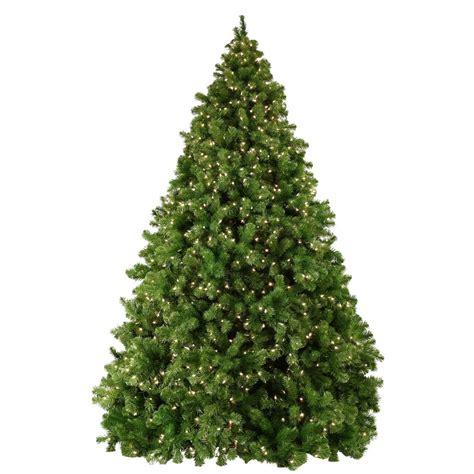 natural christmas tree 7412 the wondrous pics