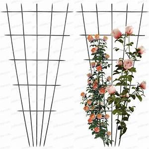 Support Pour Rosier Grimpant : treillage rosier acier lot de 2 tuteurs rosiers ~ Premium-room.com Idées de Décoration