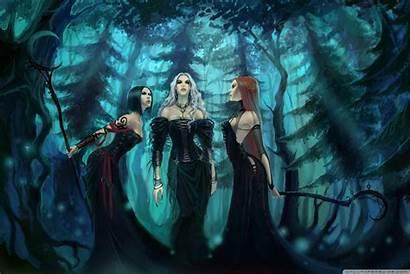 Witches Three Desktop Witch Fantasy Forest Visitar