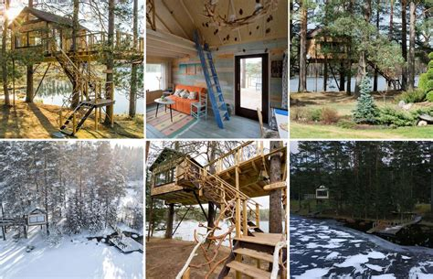 Mājiņa kokos, peldošs nams, caurspīdīgs iglu un pašiem ...