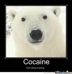 Cocaine Bear by jjh242 - Meme Center Cocaine