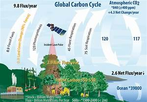 Appendix G: Full Framework Example: Global Land Carbon ...