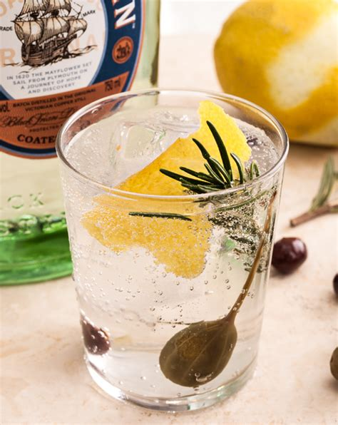 gin and tonic recipe gin and tonic barcelona style recipe chow com