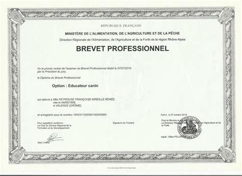 diplome secretaire medicale reconnu par l etat diplome secretaire medicale reconnu par l etat 28 images passerelle lievin elevage de vag